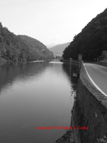 River near Florence Black and White I